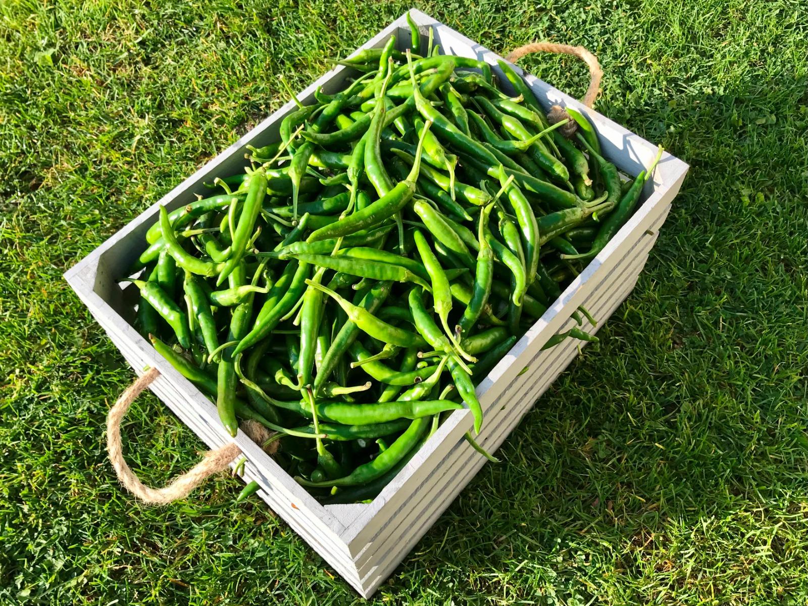 Cayenne zelené - tekuté chilli 30ml
