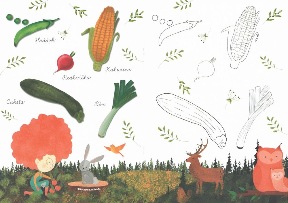 Anička spoznáva OVOCIE A ZELENINU - omaľovánka